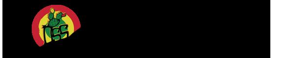 Monte Etna con Logo OSS
